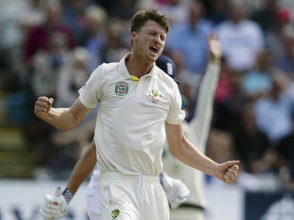 Australia's Bird celebrates taking the wicket of England's Cook during their fourth Ashes test cricket match at the Riverside cricket ground, Chester-Le-Street
