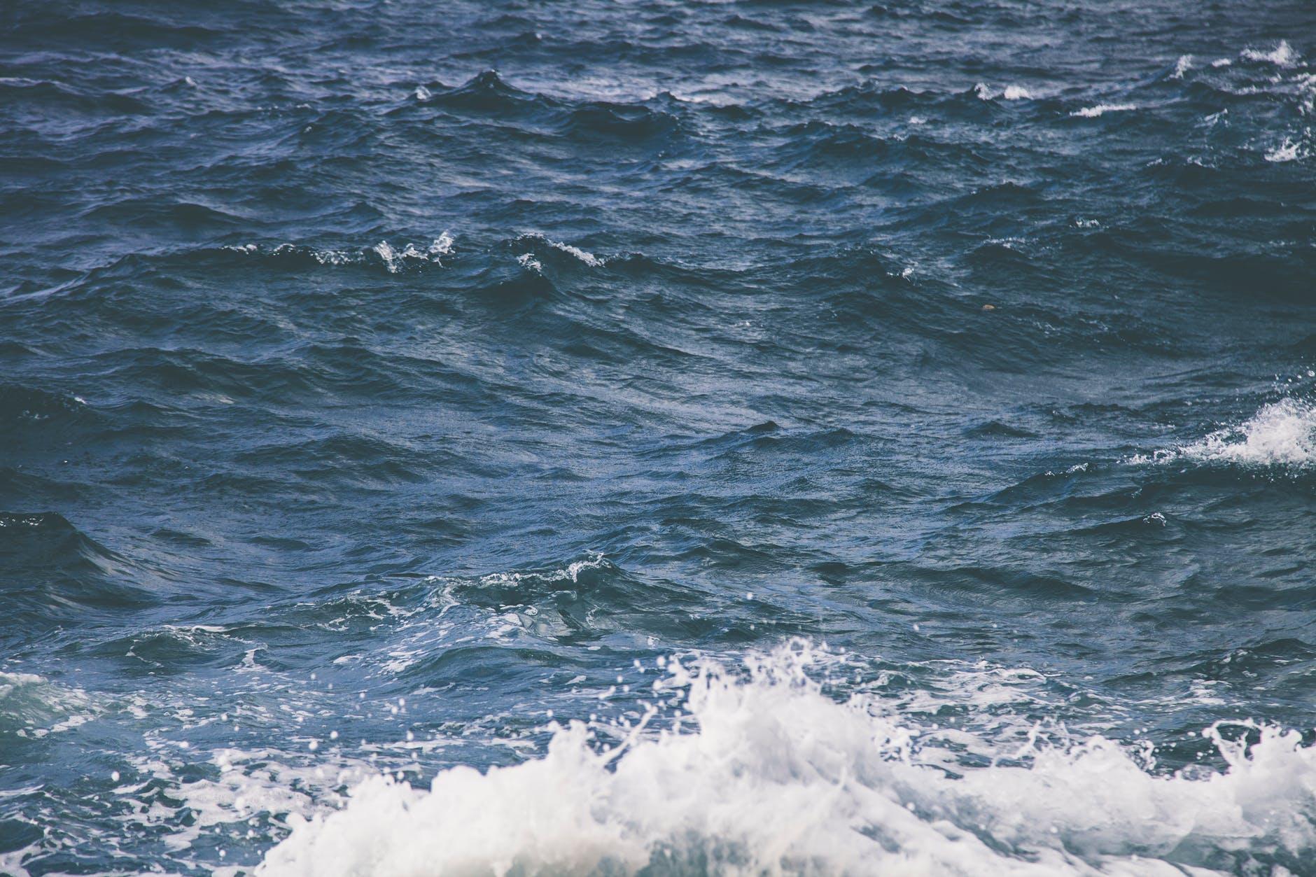 pexels-photo-881462